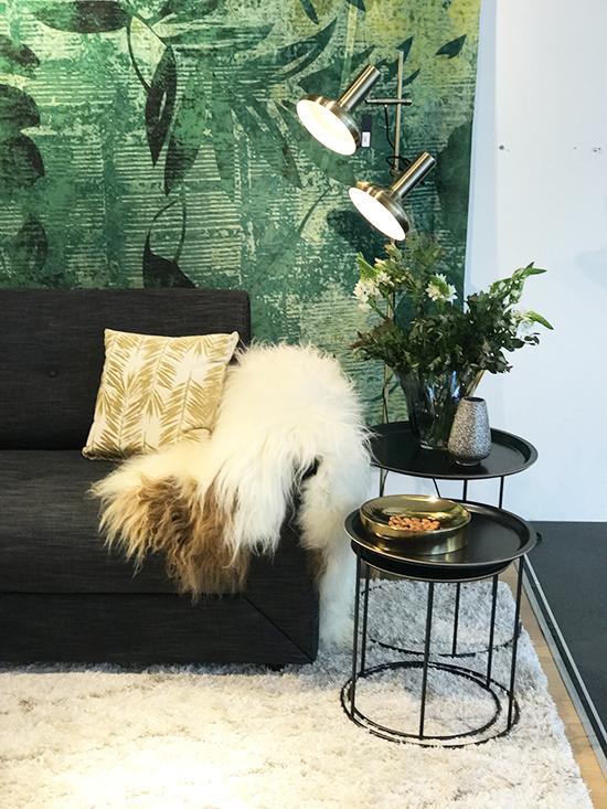 modern-designer-sofa-bed-sydney